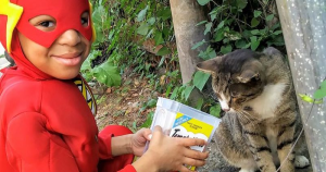 Precious Little Boy Dresses As A Superhero To Save Stray Cats In Philadelphia